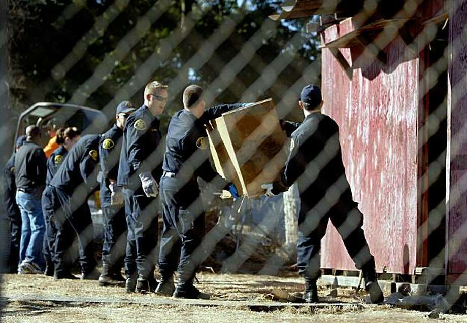 Alameda County Sheriffs deputies remove items from a shed in the backyard of Phillip Garrido's neighbor. Photo: Paul Chinn, The Chronicle