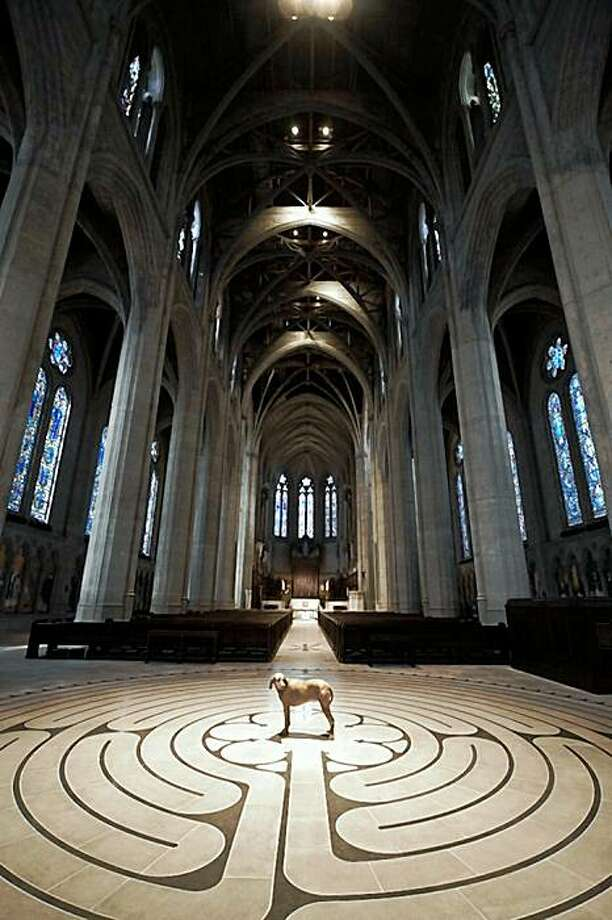 St. Francis Day Blessing of the Animals takes place on Sunday Oct 4 at Grace Cathedral. Photo: Sarah Zemunski