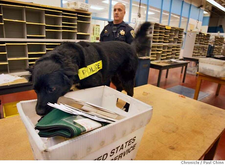 ###Live Caption:Morgan, a bomb-sniffing dog for the UC Police Department, searches for explosive material planted by officer Hans Williams, background, during a daily training exercise at the university's mail sorting facility in Berkeley, Calif., on Tuesday, April 22, 2008.  Photo by Paul Chinn / San Francisco Chronicle###Caption History:Morgan, a bomb-sniffing dog for the UC Police Department, searches for explosive material planted by officer Hans Williams, background, during a daily training exercise at the university's mail sorting facility in Berkeley, Calif., on Tuesday, April 22, 2008.  Photo by Paul Chinn / San Francisco Chronicle###Notes:Hans Williams, Morgan###Special Instructions:MANDATORY CREDIT FOR PHOTOGRAPHER AND S.F. CHRONICLE/NO SALES - MAGS OUT Photo: Paul Chinn