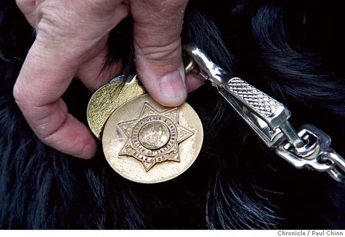 ###Live Caption:Bear, one of the UC Police Department's two bomb-sniffing canines, wears a police badge with his other dog tags in Berkeley, Calif., on Tuesday, April 22, 2008. Photo by Paul Chinn / San Francisco Chronicle###Caption History:Bear, one of the UC Police Department's two bomb-sniffing canines, wears a police badge with his other dog tags in Berkeley, Calif., on Tuesday, April 22, 2008. Photo by Paul Chinn / San Francisco Chronicle###Notes:###Special Instructions:MANDATORY CREDIT FOR PHOTOGRAPHER AND S.F. CHRONICLE/NO SALES - MAGS OUT
