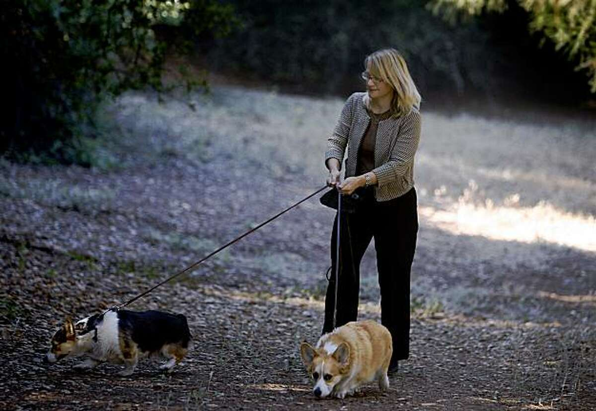 Julie Watters walks with her corgis, Ziggy and Cosmo, through Blair Park on Moraga Avenue in Piedmont, Calif., on Friday, Sept. 25, 2009. Watters is among a group of neighborhood residents who oppose a planned sports complex on the narrow strip of land citing safety and traffic concerns.