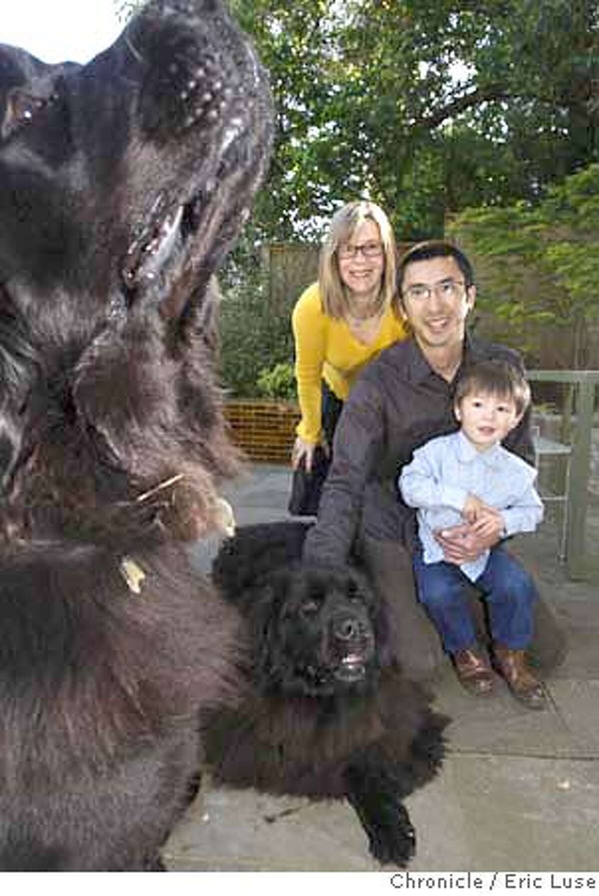 ###Live Caption:Heath Ceramic owners Catherine Bailey and Robin Petravic and their son Jasper,3, with family pet Carlo and Olive (left) sniffin at home in Sausalito photographed on Wednesday, April 16, 2008. Photo by Eric Luse / San Francisco Chronicle###Caption History:Heath Ceramic owners Catherine Bailey and Robin Petravic's and their son Jasper,3, with family pet Carlo and Olive (left) sniffin at home in Sausalito photographed on Wednesday, April 16, 2008. Photo by Eric Luse / San Francisco Chronicle###Notes:Name cq by source###Special Instructions:MANDATORY CREDIT FOR PHOTOG AND SAN FRANCISCO CHRONICLE/NO SALES-MAGS OUT