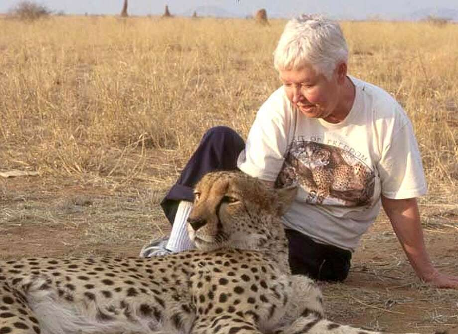 ###Live Caption:obit photo of Patty Miller, posing with cheetah. She opened one of the first Bay Area family planning clinics in the 1970s, before Roe v. Wade made abortions legal and safe. Later, in retirement, she traveled the world photographing endangered animals and raising money to save them.###Caption History:obit photo of Patty Miller, posing with cheetah. She opened one of the first Bay Area family planning clinics in the 1970s, before Roe v. Wade made abortions legal and safe. Later, in retirement, she traveled the world photographing endangered animals and raising money to save them.###Notes:###Special Instructions: Photo: Family Photo