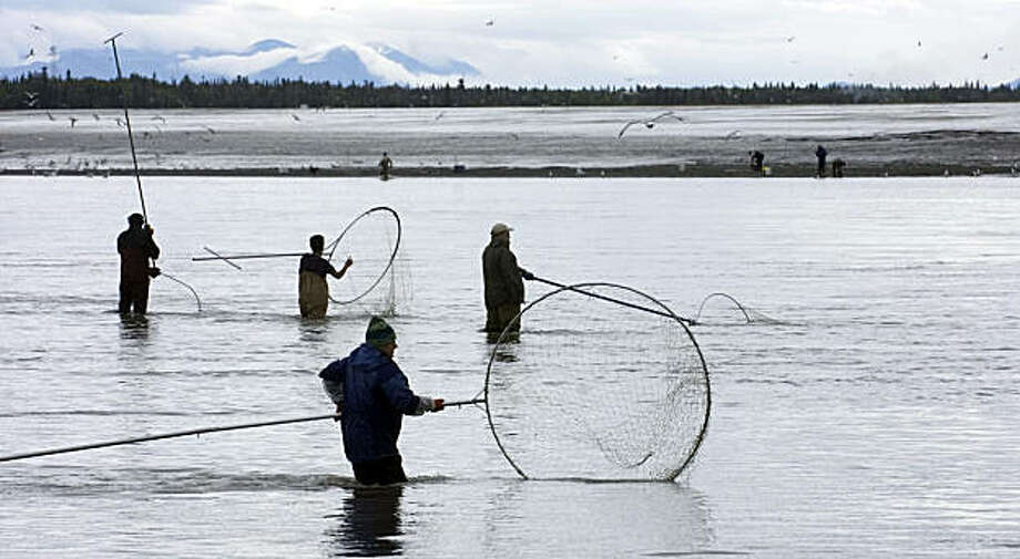 ALASKA FISHING: Dipnet fishermen work the mouth of the Kenai River, where it drains into Cook Inlet in downtown Kenai, Alaska. Illustrates ALASKA-FISHING (category a) by Kim Murphy (c) 2009, Los Angeles Times. Moved Saturday, Aug. 29, 2009. (MUST CREDIT: Photo for the Los Angeles Times by M. Scott Moon.)  Dipnet fishermen work the mouth of the Kenai River, where it drains into Cook Inlet in downtown Kenai, Alaska. Illustrates ALASKA-FISHING (category a) by Kim Murphy (c) 2009, Los Angeles Times. Moved Saturday, Aug. 29, 2009. (MUST CREDIT: Photo for the Los Angeles Times by M. Scott Moon.) Photo: M. Scott Moon, Los Angeles Times