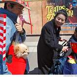 Scott Joe and his dog Peppy drew a lot of attention as the crowd gathered where they expected to see the Olympic torch pass by at Battery and Embarcadero on April 9, 2008 in San Francisco, Calif. Photo by Deanne Fitzmaurice / San Francisco Chronicle
