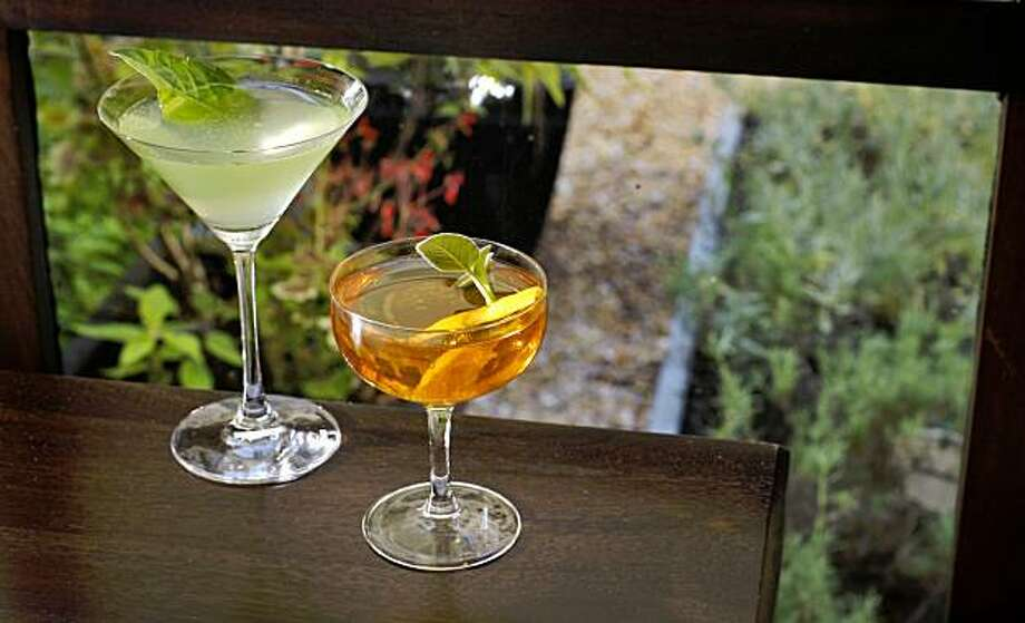 Scott Stewarts cocktail a gin based drink the  Lonsdale No.3  and a sagerac ( which is  a play off of the sazerac only with sage)  at the Fifth Floor restaurant, Friday August14, 2009, in San Francisco, Calif. The herbs in that garnish and are used in the drinks come from the restaurants herb garden. Photo: Lacy Atkins, The Chronicle