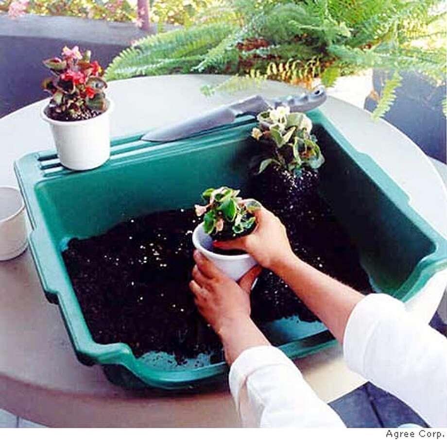 ###Live Caption:The Table Top Gardener###Caption History:The Table Top Gardener###Notes:###Special Instructions: Photo: Ho