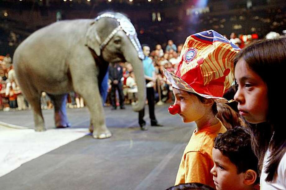 "Zeke Milvy, age 8, right, from San Francisco, watches Kelli Ann the elephant during the pre-show get-close-to-the-circus show as The Ringling Brothers and Barnum & Bailey Circus, ""The Greatest Show on Earth"" comes to the Oracle Arena in Oakland, Calif. on Thursday, August 14, 2008. Photo: Katy Raddatz, The Chronicle"