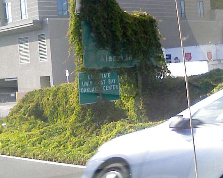 A freeway sign, off Highway 880 by Oakland's Jack London Square, Photo: Linda Shigio, Special To The Chronicle