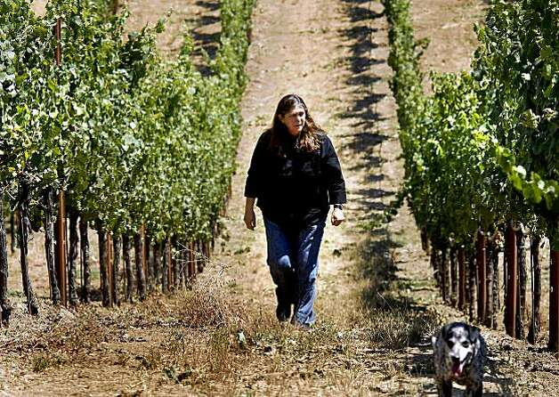 Winemaker Milla Handley walks through a Gewurztraminer vineyard on the property of her Mendocino County property. Milla Handley is the winemaker for Hanley Cellars off highway 128 in the Anderson Valley of Mendocino County. Photo: Brant Ward, The Chronicle