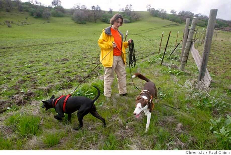 "###Live Caption:Donna Holsten and her two search dogs, Anubis and Loki, look for client Britney Malden's missing pet in a cow pasture in Brentwood, Calif., on Friday, Feb. 22, 2008. Malden's five-year-old Jack Russell terrier ""Wesley"" disappeared from their rural home two weeks ago and may have been killed by a coyote.  Photo by Paul Chinn / San Francisco Chronicle###Caption History:Donna Holsten and her two search dogs, Anubis and Loki, look for a client's missing pet in a cow pasture in Brentwood, Calif., on Friday, Feb. 22, 2008. Britney Malden's five-year-old Jack Russell terrier Wesley disappeared from their rural home two weeks ago and may have been killed by a coyote.  Photo by Paul Chinn / San Francisco Chronicle###Notes:Donna Holsten, Britney Malden###Special Instructions:MANDATORY CREDIT FOR PHOTOGRAPHER AND S.F. CHRONICLE/NO SALES - MAGS OUT Photo: Paul Chinn"