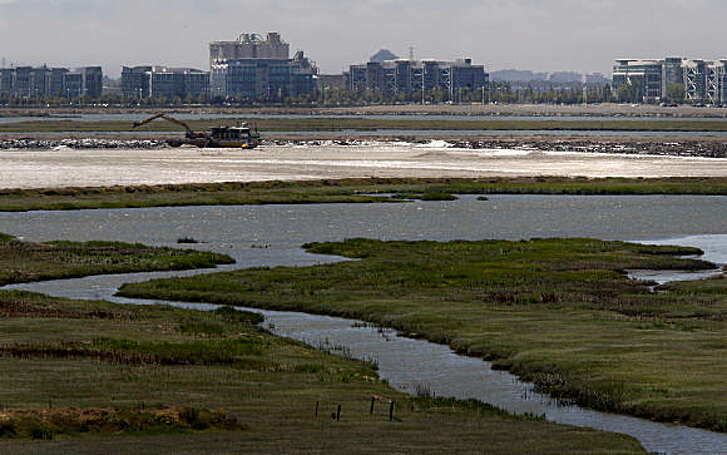 A view looking northwest from Bayfront park in Redwood City towards salt ponds which have been mentioned in development plans. Bay wetlands are in the foreground, Pacific Shores Center is in background. The San Francisco Bay, in a series of stories on the Editorial pages, faces new challenges in the years to come from development, pollution and human intervention.