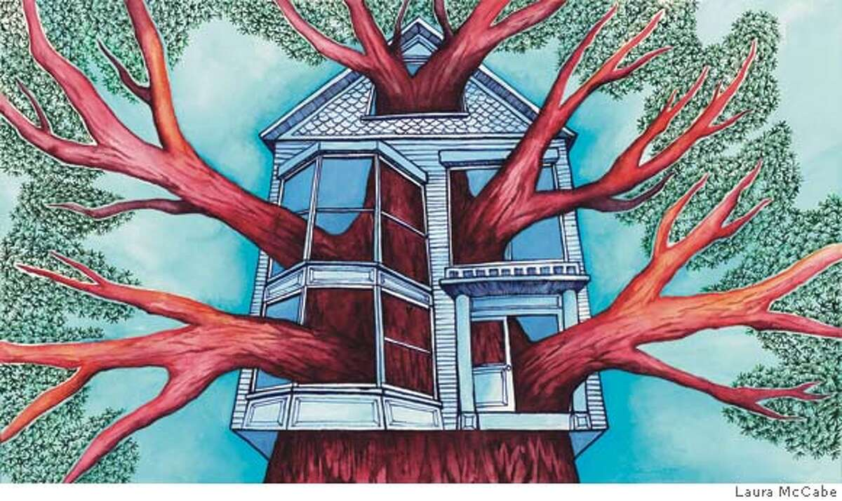 Illustration to run with MY WORD essay about a redwood tree growing in the Haight. Sunday magazine, issue of 3/23/08. Illustration for MY WORD essay about a redwood tree growing in the Haight running in 3/23/08 issue of Sunday Magazine. FIRST REPRO RIGHTS ONLY: OK to post on sfgate with article.