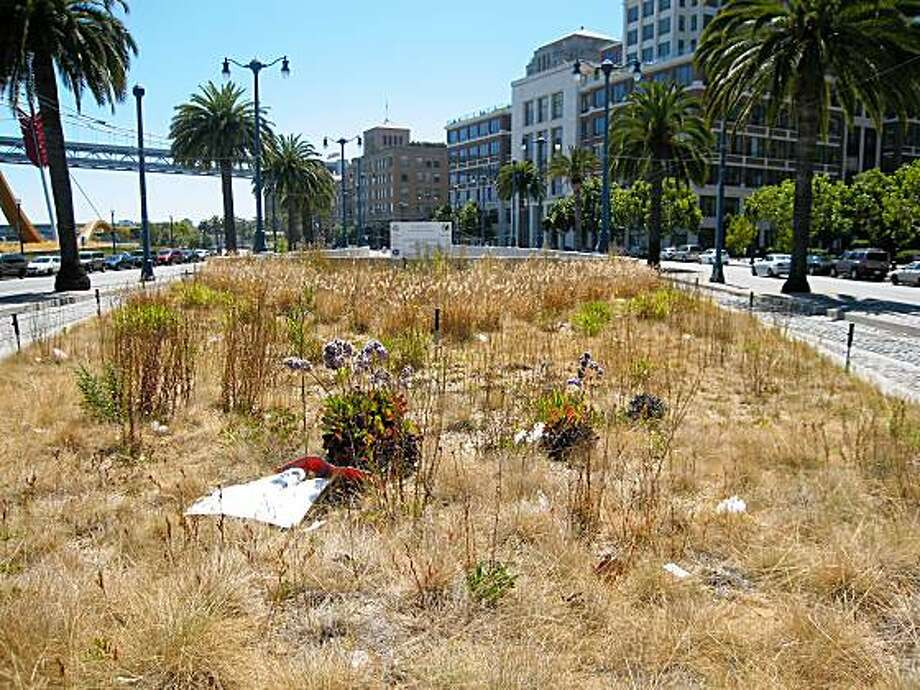 Muni tunnel garden is weeded over. Photo: Robert Selna, The Chronicle