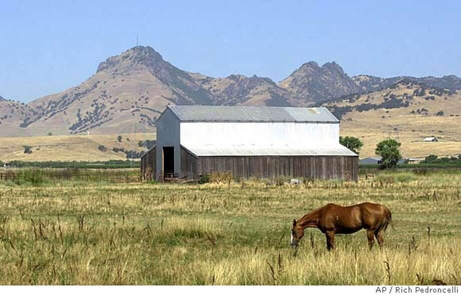 ###Live Caption:** ADVANCE FOR MONDAY, JULY 21 ** The Sutter Buttes mountain range are seen looming in the background as a hores grazes in a field near Sutter, Calif., Wednesday, July 16, 2003. Rising 2,000 feet from the Central Valley floor, the buttes have been privately owned for more then a century by descendents of homesteaders. The state Department of Parks and Recreation is preparing to negotiate buying the 1,785 Peace Valley, located in the center of the buttes, for a new state park.(AP Photo/Rich Pedroncelli)###Caption History:** ADVANCE FOR MONDAY, JULY 21 ** The Sutter Buttes mountain range are seen looming in the background as a hores grazes in a field near Sutter, Calif., Wednesday, July 16, 2003. Rising 2,000 feet from the Central Valley floor, the buttes have been privately owned for more then a century by descendents of homesteaders. The state Department of Parks and Recreation is preparing to negotiate buying the 1,785 Peace Valley, located in the center of the buttes, for a new state park.(AP Photo/Rich Pedroncelli)###Notes:###Special Instructions:ADVANCE FOR MONDAY JULY 21 Photo: RICH PEDRONCELLI