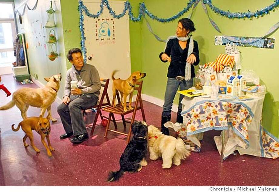 ###Live Caption:Leo Yang and Melissa Marshall enjoy the dog birthday party.  Riley, Bam Bam and Barney, three mixed breed dogs from the same litter celebrated their 1 year old birthday party at Bella & Daisy's pet boutique in San Francisco, CA. Melissa Marshall and Danielle Cheifetz of Bella & Daisy's hosted the party on February 24, 2008.  Photo by Michael Maloney / The Chronicle###Caption History:Leo Yang and Melissa Marshall enjoy the dog birthday party.  Riley, Bam Bam and Barney, three mixed breed dogs from the same litter celebrated their 1 year old birthday party at Bella & Daisy's pet boutique in San Francisco, CA. Melissa Marshall and Danielle Cheifetz of Bella & Daisy's hosted the party on February 24, 2008.  Photo by Michael Maloney / The Chronicle###Notes:***Melissa Marshall, Danielle Cheifetz, Leo Yang###Special Instructions:MANDATORY CREDIT FOR PHOTOG AND SAN FRANCISCO CHRONICLE/NO SALES-MAGS OUT Photo: Michael Maloney