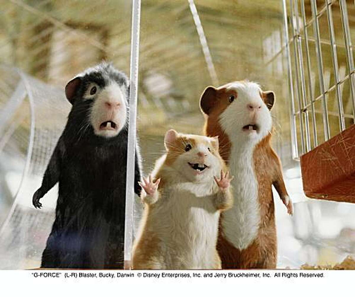 Review G Force Sends Guinea Pigs To Rescue