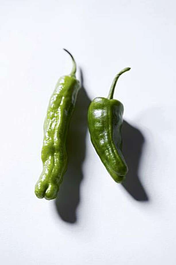 SEASONAL19_PEPPERS_03_JOHNLEEPICTURES.JPG Padron and shishito peppers By JOHN LEE/SPECIAL TO THE CHRONICLE Photo: John Lee, The Chronicle