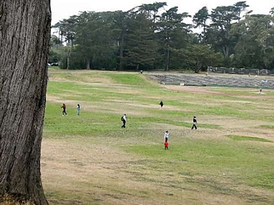 big rec fields in gg park Photo: Jonathan Curiel, The Chronicle
