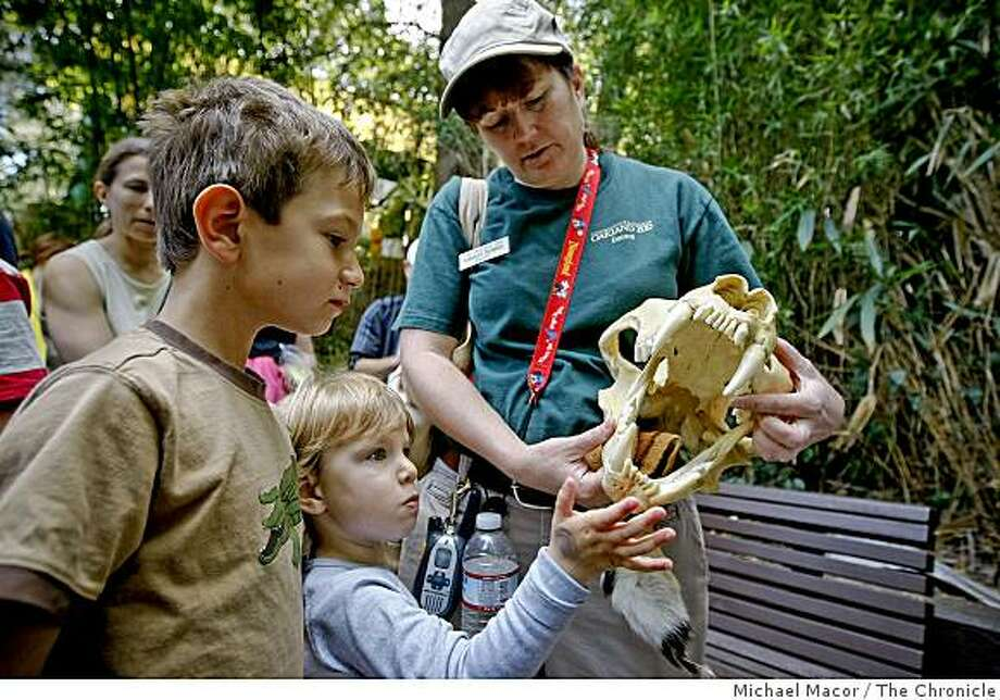 Measure C on the ballot in Oakland, Calif., if passed would provide funds to the Oakland Zoo. Alec and Samantha  Driver of Moraga get a lesson about a tiger skull from docent Cassiday Hudson during a visit on Saturday July 11, 2009. Money generated through a hotel tax increase would give money to the zoo as well as the Convention Center, Chabot Space and Science  Center, Cultural Programs and Festivals and the Oakland Museum. Photo: Michael Macor, The Chronicle