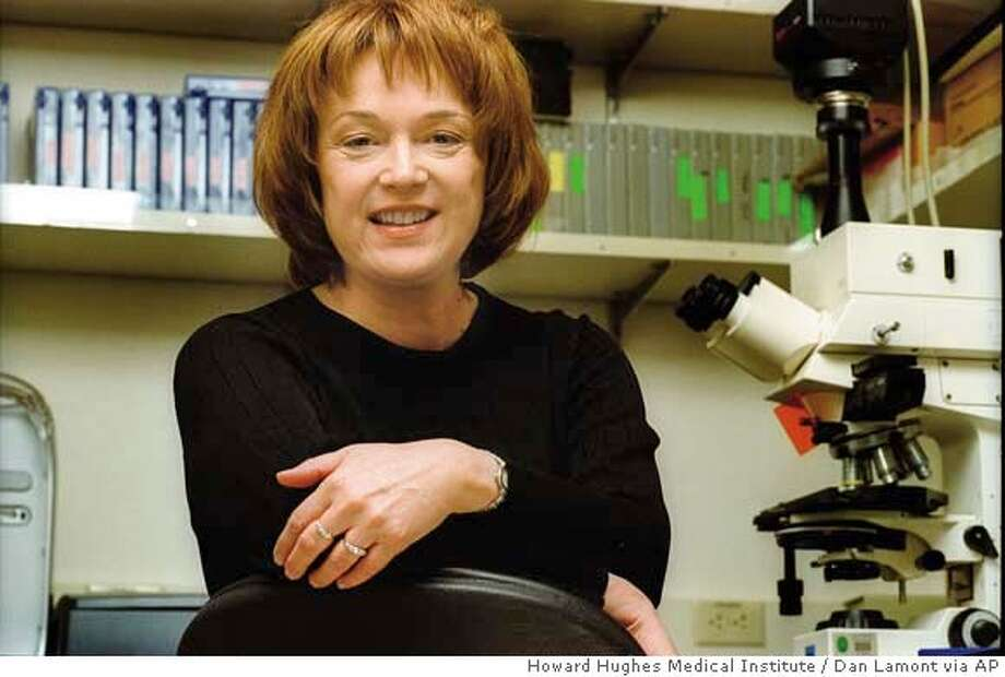 ###Live Caption:Researcher Linda Buck of the Fred Hutchinson Cancer Research Center in Seattle, Wash., seen in this undated photo, and her colleague Richard Axel of the Howard Hughes Medical Institute at Columbia University in New York were awarded the 2004 Nobel Prize in physiology or medicine on Monday, Oct. 4, 2004, for their efforts to better understand the sense of smell. (AP Photo/ Howard Hughes Medical Institute, Dan Lamont)###Caption History:Researcher Linda Buck of the Fred Hutchinson Cancer Research Center in Seattle, Wash., seen in this undated photo, and her colleague Richard Axel of the Howard Hughes Medical Institute at Columbia University in New York were awarded the 2004 Nobel Prize in physiology or medicine on Monday, Oct. 4, 2004, for their efforts to better understand the sense of smell. (AP Photo/ Howard Hughes Medical Institute, Dan Lamont)###Notes:###Special Instructions:NO SALES PHOTO RELEASED BY HOWARD HUGHES MEDICAL INSTITUTE Photo: DAN LAMONT