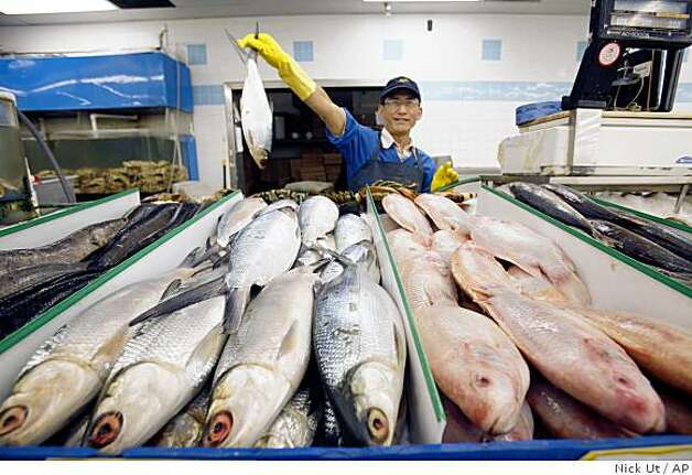 In a Thursday, June 4, 2009 photo, Hoang Van Nguyen holds milkfish at Thuan Phat market in Westminster, Calif. State and county authorities are inspecting Asian markets in Southern California to try to weed out the sale of white croaker, which has been contaminated by chemicals released into the Pacific Ocean from the 1950s to the 1970s. (AP Photo/Nick Ut) Photo: Nick Ut, AP