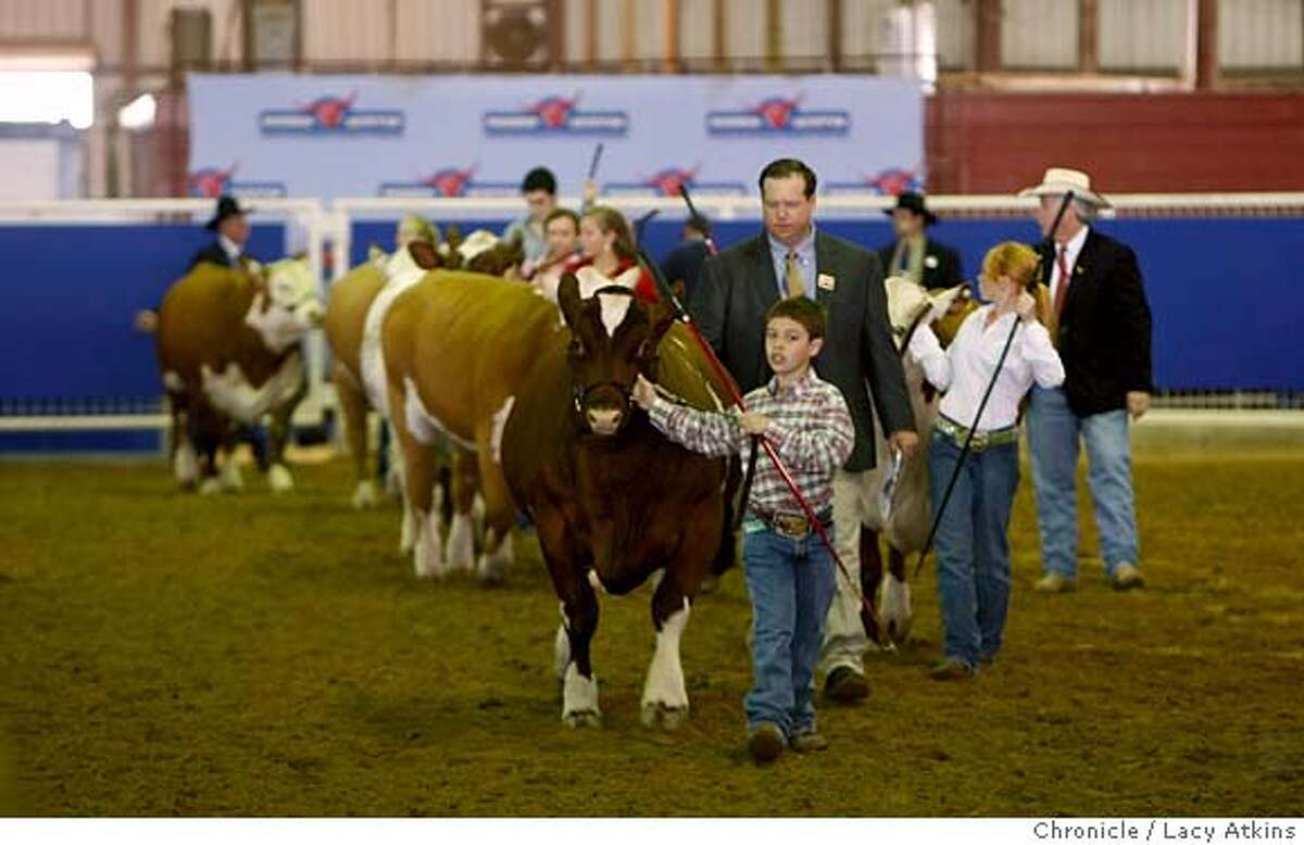 Children of all ages walk their steers into the ring for competition at the Star Rodeo, Saturday March 1, 2008, in Austin, Texas. Photo by Lacy Atkins / San Francisco Chronicle