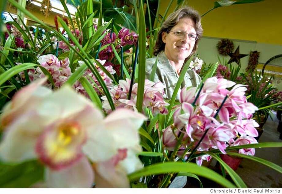 Patrick McCann, owner of Toscana Gardens and Greenworks located in the San Francisco Flower Market in Toscana Gardens February 25, 2008 in San Francisco, California. Photo: David Paul Morris
