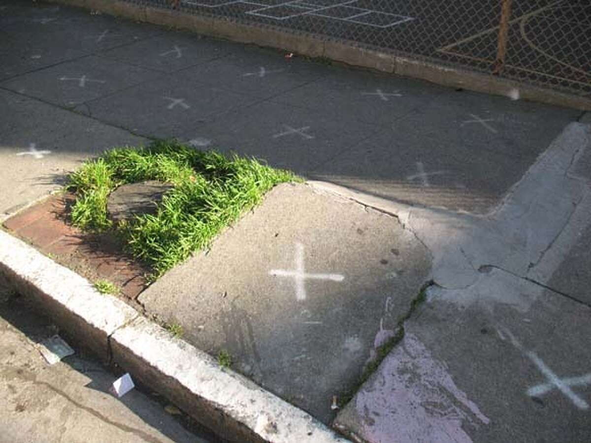 a tree stump needs to be removed, and sidewalk needs to be leveled, outside Spring Valley Elementary School on Jackson Street in San Francisco.