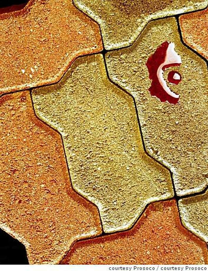 Decorative pavers sealed with a penetrating sealer Photo: Courtesy Prosoco