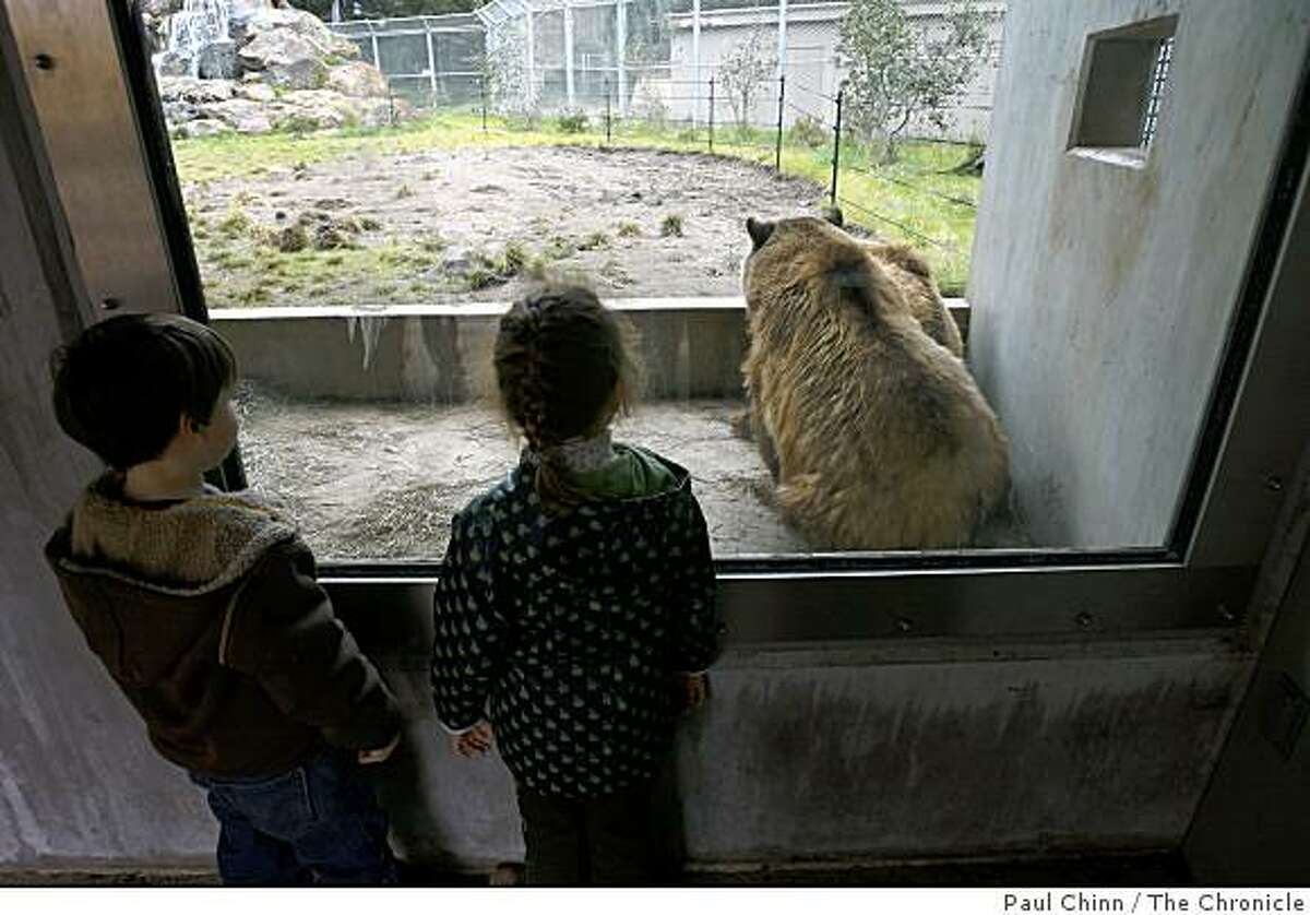 Brother and sister Richie and Avery (no last name given) watch grizzly bear sisters Kachina and Kiona huddle inside the Grizzly Gulch exhibit at the San Francisco Zoo in San Francisco, Calif. on Thursday, Jan. 3, 2008. The grizzly habitat is one of the improvements made at the zoo in recent years. The zoo has been shut down since Christmas Day while authorities investigated a mauling by Siberian tiger Tatiana that resulted in the death of one visitor and injuries to two of his friends.