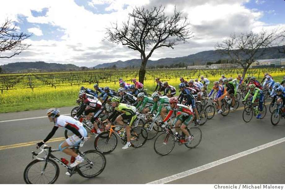 The pelaton travels on Oakville Cross Road in the Napa Valley past a vineyard of blooming mustard.  Stage 2 of the 2007 Amgen Tour of California, a 650 mile bicycle race from San Francisco to Long Beach, California. Eighteen teams and 144 riders are participating in the 8 day race through California. Today's stage on February 20, 2007 started in Santa Rosa, through the vineyards of Sonoma and Napa Valleys, finishing 115.8 miles later in Sacramento.  Photo by Michael Maloney / San Francisco Chronicle MANDATORY CREDIT FOR PHOTOG AND SF CHRONICLE/NO SALES-MAGS OUT Photo: Michael Maloney