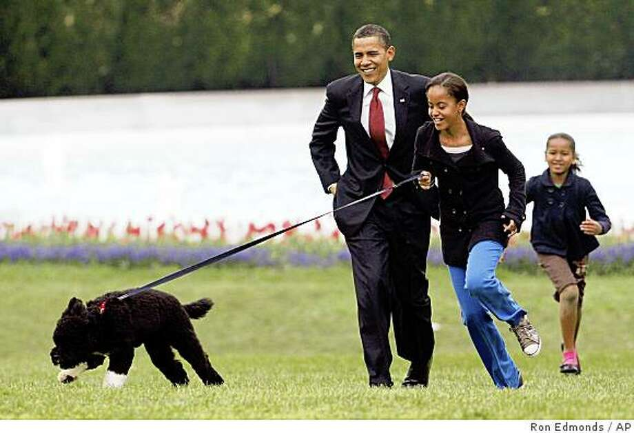 Malia Obama runs with Bo, followed by President Barack Obama and Sasha Obama, on the South Lawn of the White House. Photo: Ron Edmonds, AP