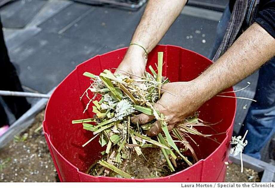 Chronicle Garden Planting Potatoes In A Tower Sfgate