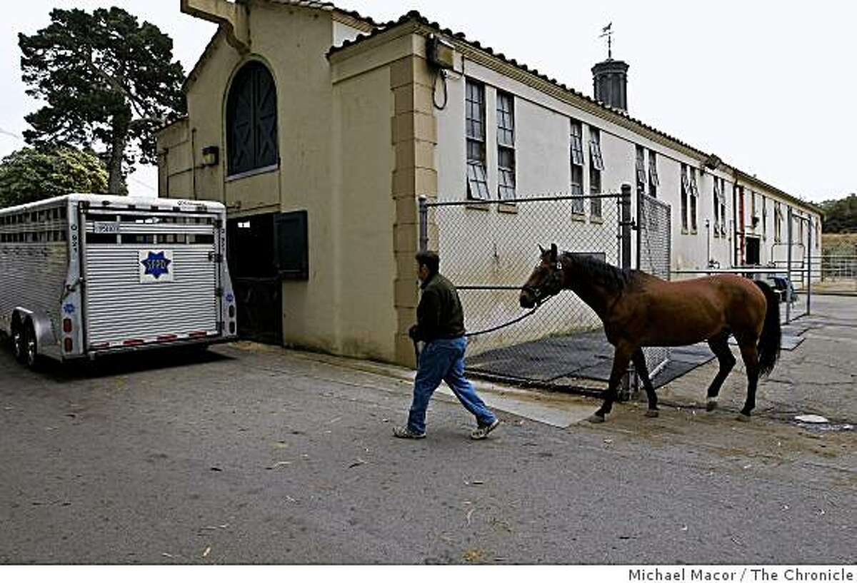 """Sgt. Bob Totah leads retiring police horse, """"Chip"""" to a trailer following a ceremony, on Tuesday June 15, 2009, that honored the horse for 10 years of service as part of the Mounted Unit of the SFPD, in San Francisco, Calif. Two mounted unit horses were retired today, the other """"Kenny"""" after 12 years of service."""