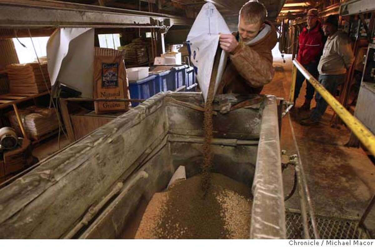 bugsfarm27_024_mac.jpg UC Davis student Ben De Young, who is studying Animal Sciences, pours a bag of antibiotic into the feed mixer, an agricultural version of Tetracycline. Looking the diminishing effectiveness of antibiotics, this time at the agricultural industry where antibiotics are mixed with food given to various animals such as sheep and cattle that end up in the human food chain. Michael Macor / The Chronicle Taken on 1/25/08, in Davis, CA, USA MANDATORY CREDIT FOR PHOTOG AND SAN FRANCISCO CHRONICLE/NO SALES-MAGS OUT