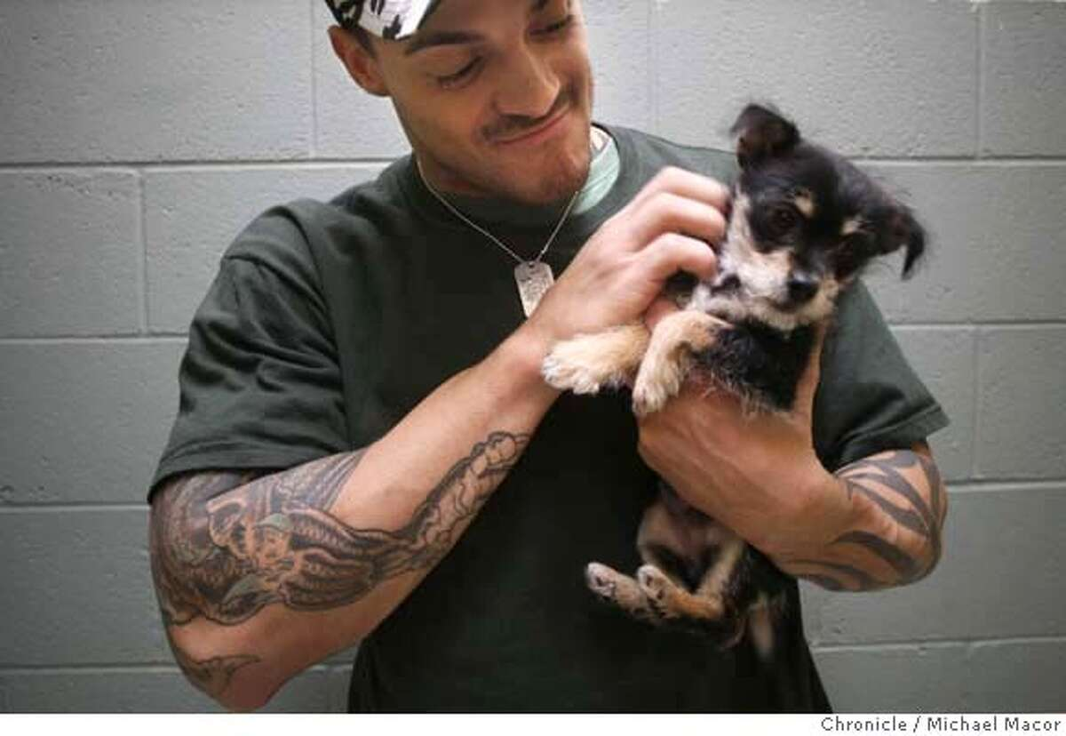 cooper_177_mac.jpg Cooper visits with a small terrier waiting for a home at the shelter. Jarrod Cooper, a special teams player for the Oakland Raiders has started a foundation,