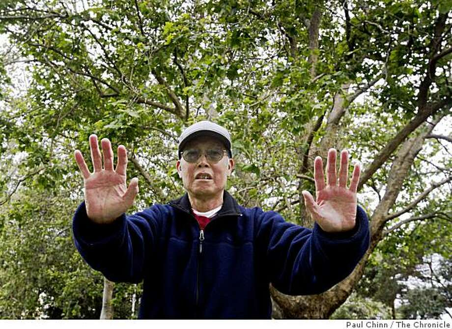 Andy Chu participates in his morning Tai Chi class at Washington Square Park in San Francisco, Calif., on Friday, June 5, 2009. Chu uses the daily exercise routine to help manage his diabetes. Photo: Paul Chinn, The Chronicle