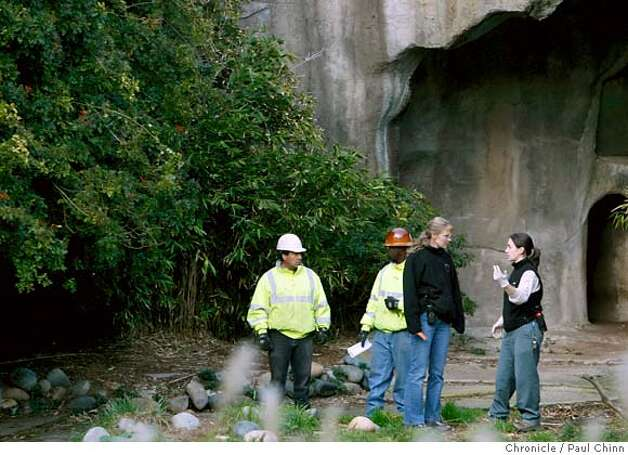 Zoo employees and construction workers confer inside an enclosure for the lions. Zoo officials provided a glimpse of the outdoor lion and tiger grotto which is undergoing security upgrades in San Francisco, Calif. on Wednesday, Jan. 2, 2008. The zoo is scheduled to reopen Thursday after the Christmas Day tiger mauling that resulted in one death and two injuries to three zoo visitors.  POOL PHOTO: PAUL CHINN/The Chronicle Photo: PAUL CHINN