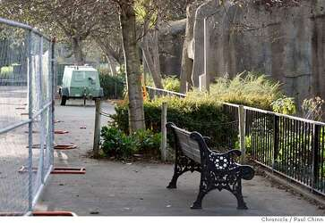 S F  Zoo visitor saw 2 victims of tiger attack teasing lions