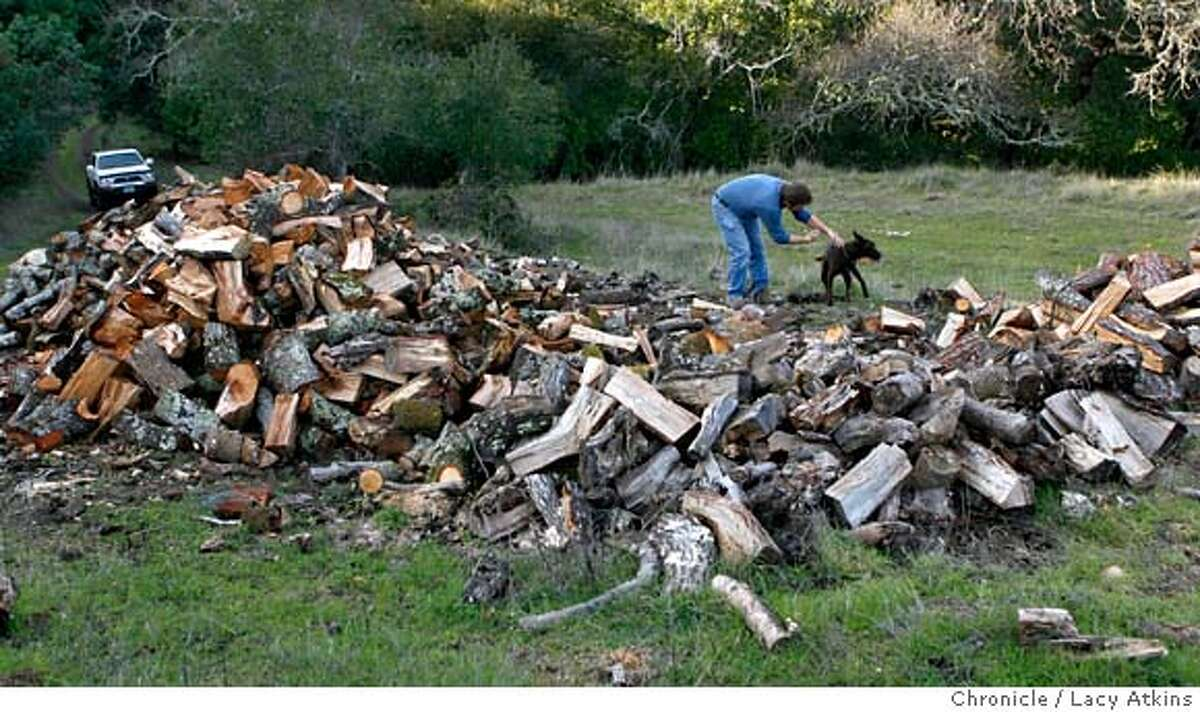 Vernon Huffman with his dog Daisy stack wood that has been collected on his ranch to use to warm his home, Wednesday January 16, 2008, in San Anselmo, Ca. (Lacy Atkins San Francisco Chronicle) MANDATORY CREDIT FOR PHOTOG AND SAN FRANCISCO CHRONICLE/NO SALES-MAGS OUT