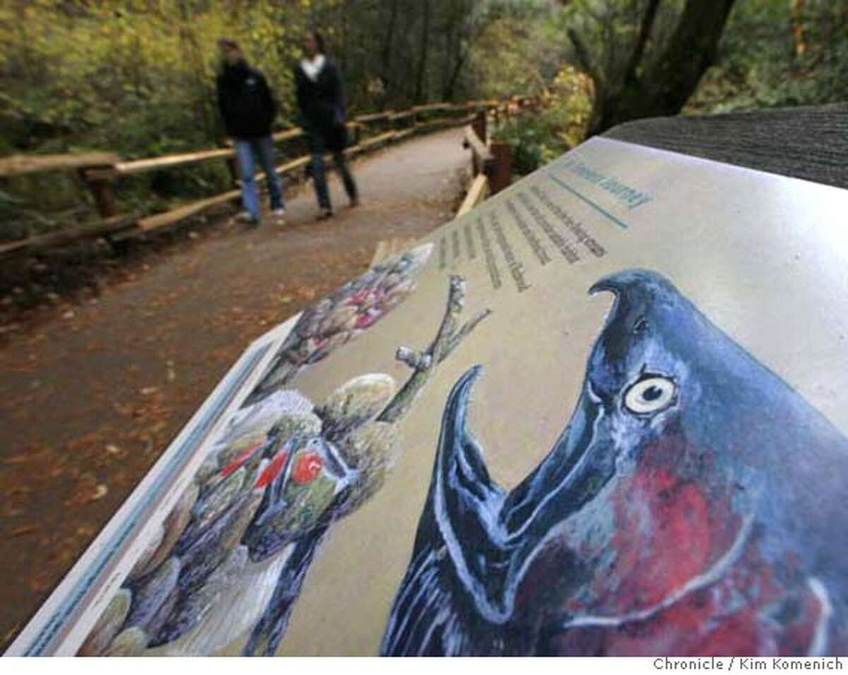 MUIRWOODS_325_KK.JPG A sign illustrating the life of the Coho salmon waits for visitors at Muir Woods. January 2008 will mark the 100th anniversary of the dedication of Muir Woods an area that if not for Congressman William Kent, would be under 1,000 feet of water. Photo by Kim Komenich/The Chronicle ** MANDATORY CREDIT FOR PHOTOG AND SAN FRANCISCO CHRONICLE. NO SALES- MAGS OUT.