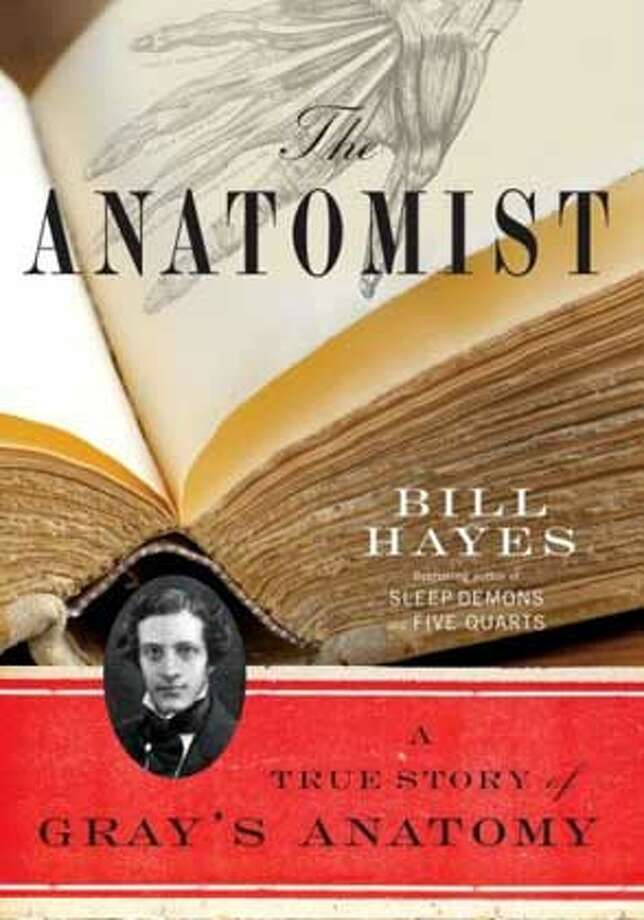 """The Anatomist"" by Bill Hayes"