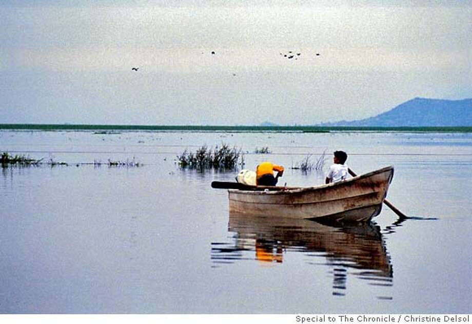 TRAVEL MEXICO -- Migrating white pelicans (from central Canada) on the south shore of Lake Chapala, the largest fresh-water lake in Mexico, in the small fishing village of Petatan. Christine Delsol / The Chronicle Photo: Christine Delsol