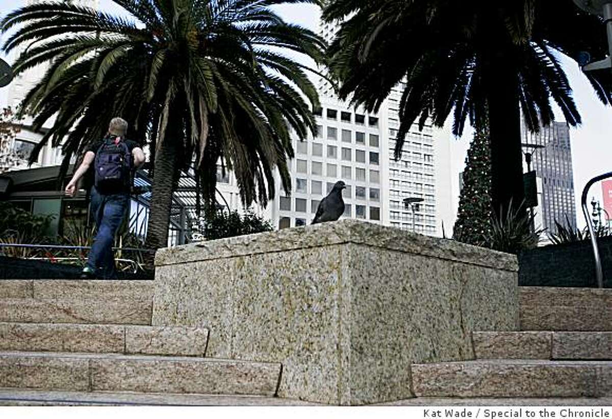 On 12/7/07 a pigeon sits atop one of the granite pedestals on all four corners of Union Square were designed for performers although performing for tips is prohibited in San Francisco Parks. Photo by Kat Wade