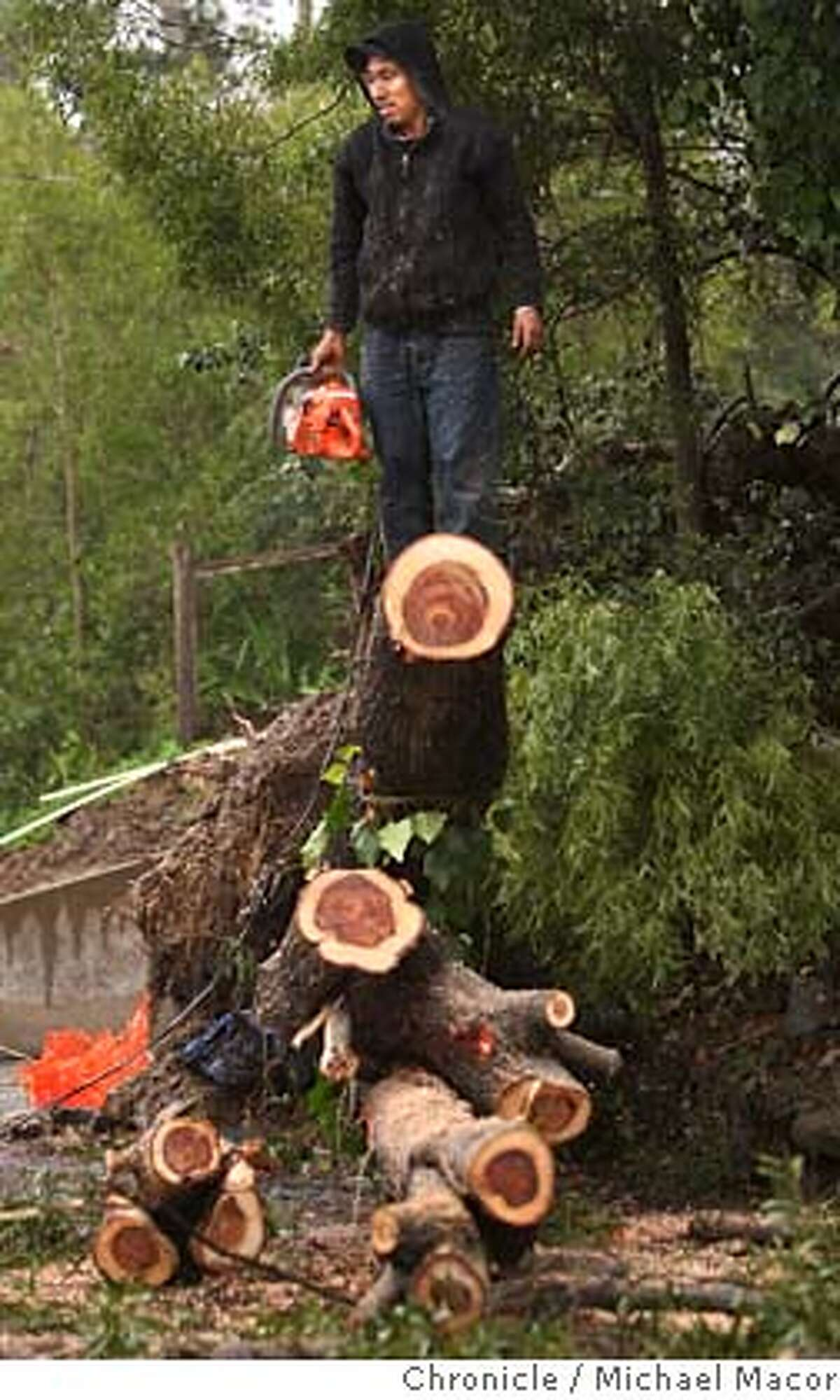 weather05_nbay_185_mac.jpg Pedro Diaz works to clear a tree the fell yesterday blocking the roadway near the intersection of Homestead Blvd. and Gomez Way, in Mill Valley. The third storm to hit the Bay area began this morning as the work to clean up from yesterday's hugh hit began. Photo by: Michael Macor / The Chronicle Taken on 1/5/08, in Mill Valley, CA, USA MANDATORY CREDIT FOR PHOTOG AND SAN FRANCISCO CHRONICLE/NO SALES-MAGS OUT