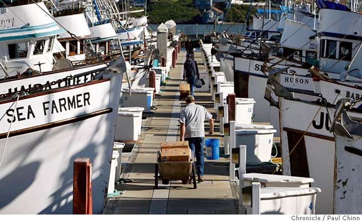 In this file phto, fishermen haul supplies to their boats to get ready for Saturday's opening of the crab fishing season at Spud Point Marina in Bodega Bay, Calif..