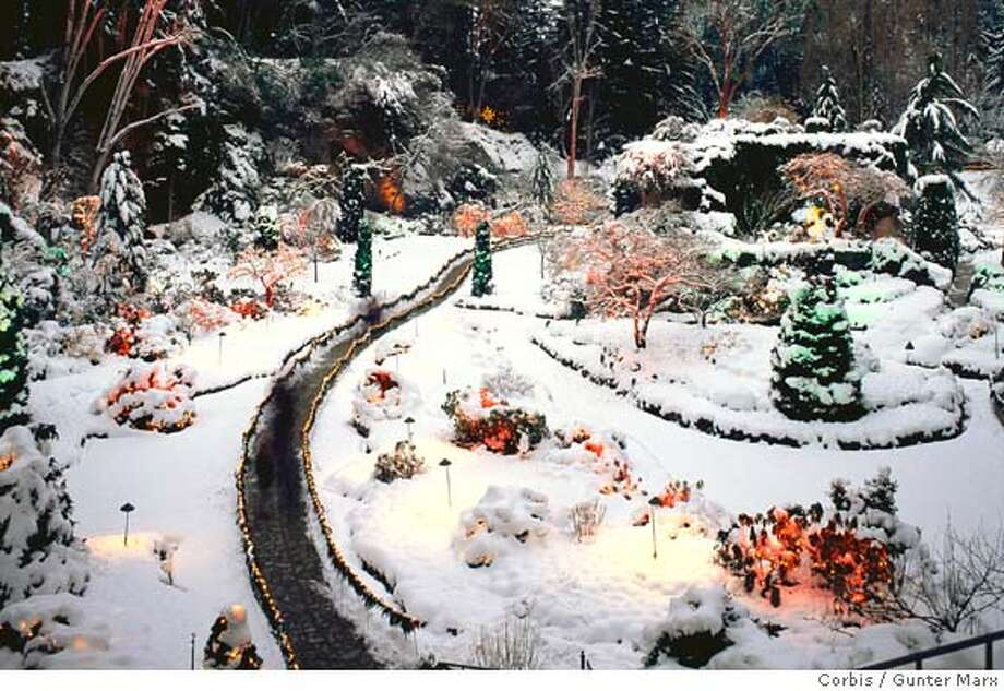 09 Jan 1997, Victoria, British Columbia, Canada --- Garden Decorated for Christmas --- Image by � Gunter Marx Photography/CORBIS Photo: Gunter Marx