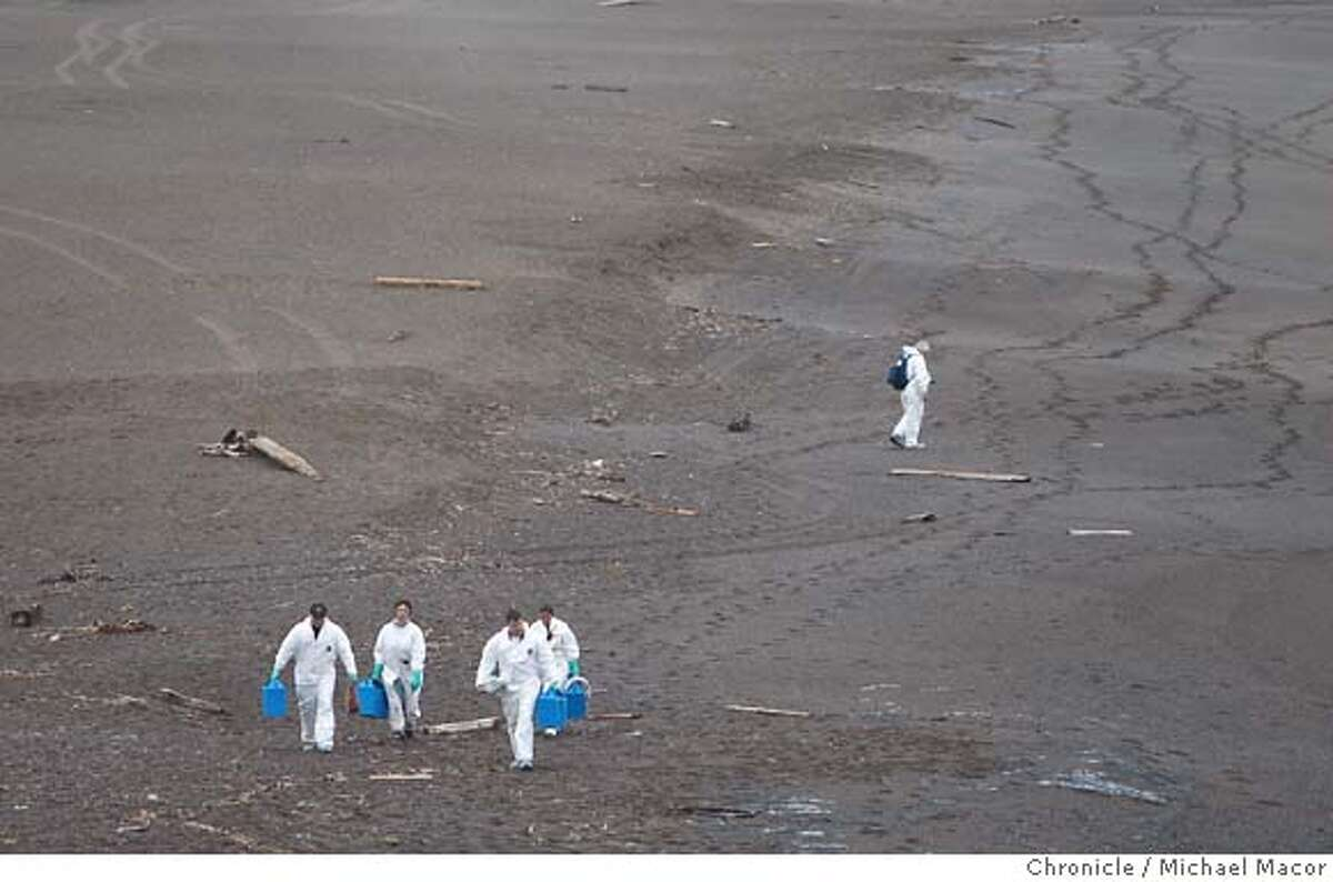 oilspill09_0318_mac.jpg Workers with the Marine Mammal Center in the Marin Headlands are out walking Rodeo Beach collecting shorebirds affected by the oil spill on behalf of the Oiled Wildlife Care Network. After the collision of the Cosco Busan container ship with a tower footing of the Bay Bridge yesterday morning , clean up crews begins the work of containing and cleaning up the spilled oil as it reaches nearby San Francisco Bay beaches. photog} / The Chronicle Photo taken on 11/8/07, in San Francisco, GA, USA