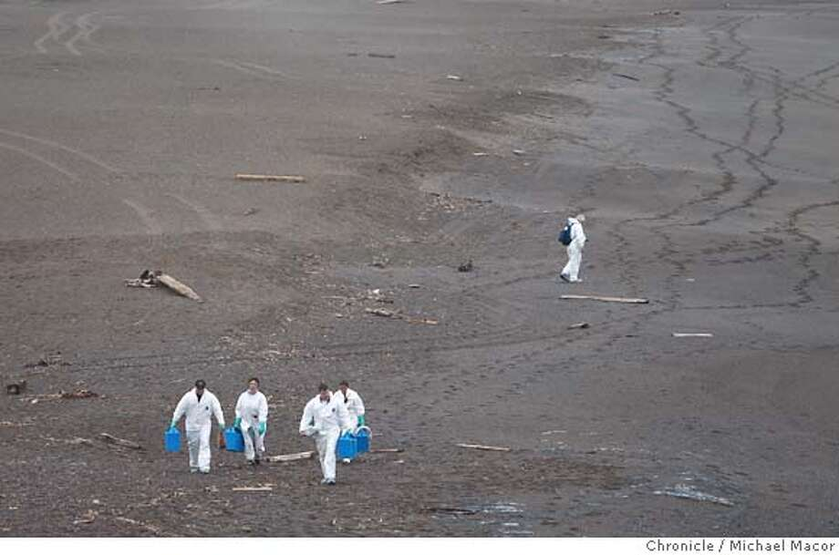 oilspill09_0318_mac.jpg Workers with the Marine Mammal Center in the Marin Headlands are out walking Rodeo Beach collecting shorebirds affected by the oil spill on behalf of the Oiled Wildlife Care Network. After the collision of the Cosco Busan container ship with a tower footing of the Bay Bridge yesterday morning , clean up crews begins the work of containing and cleaning up the spilled oil as it reaches nearby San Francisco Bay beaches. photog} / The Chronicle Photo taken on 11/8/07, in San Francisco, GA, USA Photo: Michael Macor